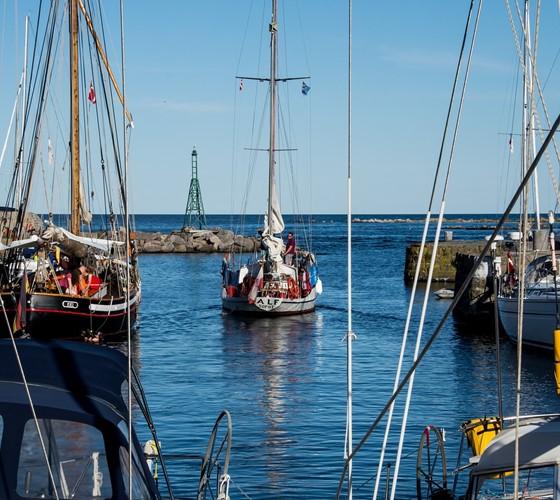 Natuur aan de kust in Denemarken